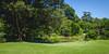 Green view (frenkel.ilia) Tags: royalbotanicalgardens tree bench grass green