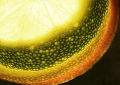 It's a-peeling to me Macro Monday (radleyfreak) Tags: macromonday citrus peel lemon lime orange hmm fruit yellow green colour light slices sliced slice detail pattern cut backlight appealing rind stack zest