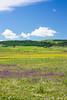 IMG_5208-1 (Andre56154) Tags: spanien espana spain andalusien andalusia blume flower wiese weide meadow himmel sky wolke cloud