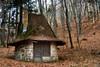Mint a mesében / Like in a fairytale (eR.A.) Tags: forest house fairytale nikon d610 nikkor 24120