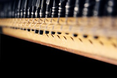 Ben gidersem sazım kalır... (halukderinöz) Tags: dof alan derinlik kanun instrument turkish music classical türk müzik klasik