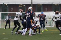 4D3A3025 (marcwalter1501) Tags: minotaure tigres strasbourg footballaméricain football sportdéquipe sport exterieur match nancy