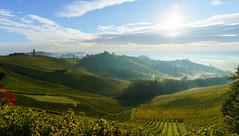 sunny vineyards (Kitschi_) Tags: südsteiermark autumn herbst sonynex landscape southstyria landschaft 1018 vineyards sony weinberge oss f4 nex6