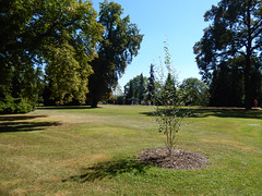Royal Gardens of Prague Castle, 2016 Aug 27 -- photo 6 (Dunnock_D) Tags: czechia czechrepublic prague blue sky garden gardens lawn royalgarden královskázahrada malástrana lessertown