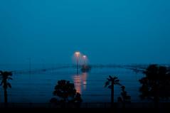 Foggy night in harbor (Yuta Ohashi LTX) Tags: fog night rainy harbor sea シルエット 夜 霧 雨 外灯 light silhouette