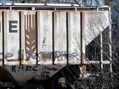 Cracker lives matter (Just Back) Tags: cynic race racism despair cracket white lives life train car moving wheat words graffiti grafitti graffitti columbia sc letters english r h e c grain transport sky thought