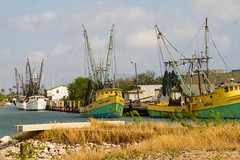 Shrimp trawlers (Lindell Dillon) Tags: shrimtrawlers shrimpboats fishermen shrimpers texas portisabel harbor lindelldillon