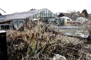 Verlassene Gärtnerei - Abandoned Horticulture