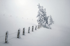 La luz quiere... (arbioi) Tags: canon enekorri eugi esteribar frio gr11 gr12 paisaje kintoreal urkiaga montaña montañas navarra nafarroa naturaleza nieve nieblas pirineo pyrenees pirineos pyrenee peñadelosgenerales quintoreal snow zagua baztan artesiaga