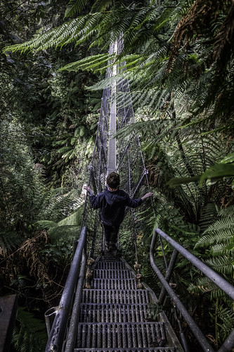 The swing bridge #6, Montezuma Falls, Tasmania's West Coast