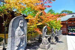 AutumnComing.  Glenn E Waters. Japan 2015. (Glenn Waters in Japan.) Tags: statue japan nikon shrine aomori hirosaki jinja d800    glennwaters