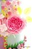 Peony love! (Little Cottage Cupcakes) Tags: birthday party flower cakes cake garden cupcakes pastel peony fairy birthdaycake fairies magical gardenparty enchanted peonies fondant cupcaketower sugarart flowerfairy tieredcake fairycake sugarpaste cakeart girlcake littlecottagecupcakes