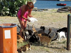 Woman feeding cats (SuperSpotter) Tags: sunset summer dog sun mountain beach cat kitten greece cave samos pythagoras ormos votsalakia superspotter