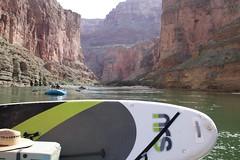 Grand Canyon 2015 570