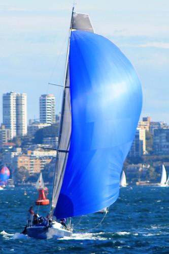 sailing sydney sydneyharbour