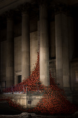 873039 Liverpool Poppies (Walks Walker) Tags: uk light red england black building london tower st architecture tom night liverpool dark paul evening hall blood long exposure touch walker poppy poppies column piper lands swept hdr cummins seas colonnade merseyside thewalkertouch