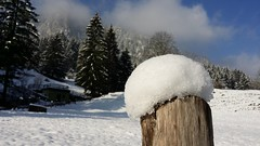 First Snow (Been Around) Tags: schnee winter snow austria sterreich hiver eu obersterreich o 2015 upperaustria steyrling neuschnee newsnow pyhrnprielregion gemeindeklausanderpyhrnbahn