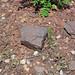 Taconite (Biwabik Iron-Formation, Paleoproterozoic, ~1.878 Ga; Hull-Rust-Mahoning Mine, Hibbing, Minnesota, USA) 3