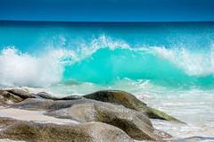 DSC_1186 (NICOLAS POUSSIN PHOTOGRAPHIE) Tags: soleil eau sable bleu coco fin vague plage rocher palmier bois seychelle turquoide