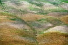 Farben und Linien - Crete Senese (Wolfgang.Grilz) Tags: unesco tuscany siena montepulciano valdorcia toskana cretesenese