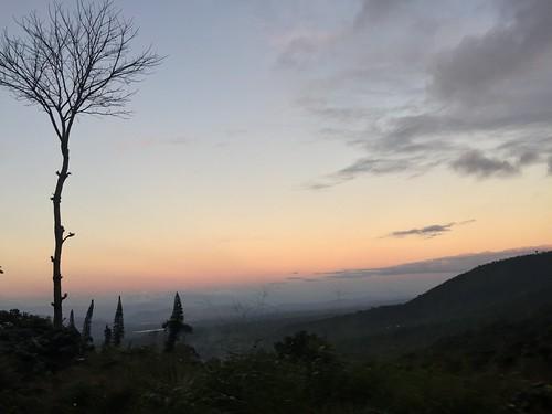 Finca El Manzano/Beneficio Cuatro M