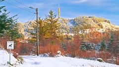 Djupadalen, Haugesund (Syriax) Tags: djupadalen djupadalennorge haugesunddjupadalen haugesund haugesundnorway haugesundnorge hikingnorway hiking hikingmountains city forrest forest snow snowmountain norway
