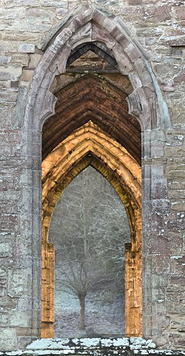 Windows and Arches