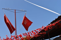 Red flags (yellaw travel) Tags: india inde alleppey red flags drapeau drapeaux communiste communisme communism sky blue kerala