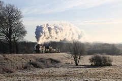 30541 - Frosty Fields (Oli G 15) Tags: 30541 steam train loco locomotive q class southern br british railways tender track rails ballast footplate crew driver smoke exhaust glint sun sunrise winter shadows frost freezing fields freight wagons goods trees bushes fence blue sky bluebell railway jon bowers photo charter freshfield bank incline 2017