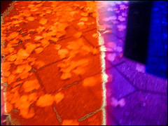 20161106-003 (sulamith.sallmann) Tags: pflanzen abstract abstrakt berlin blatt blur blätter deutschland effect effekt filter folie folientechnik germany kunststoff mitte plants plastic plastik unscharf wedding deu sulamithsallmann