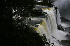 Iguassu Falls (1) (Mahmoud R Maheri) Tags: waterfall iguassu iguazu brazil water nature landscape trees worldheritagesite naturalwonderoftheworld iguacu fozdoiguacu