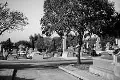 #g (Lys de Kerk) Tags: madrid spain eos 450d eos450d canoneos450d canon sigma sigma30mm14art 30mm 14art 14 nd nd30 nd3000 ndfilter graveyard fuencarral cementario cementariofuencarral