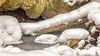 Winterwalk (MSPhotography-Art) Tags: schnee höhle albtrauf landscape landschaft nature wanderung germany outdoor natur snow eis mountains hiking iced wandern cave frozen cold trekking badenwürttemberg schwäbischealb deutschland badurach alb winter cool de