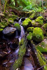 Mount Wellington (cameroonjb) Tags: wellington mount hobart tasmania australia waterfall