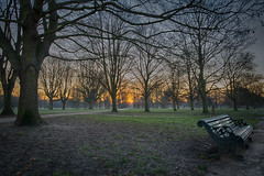 New Day (Nick.Richards) Tags: winter newday dawn sunrise park royalparks kensingtongardens london lightroom landscape bench earlymorning nikon nikon1685 nickrichards nikefex d7100 1685 england