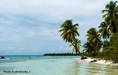 Isla Saona-República Dominicana (johnfranky_t) Tags: isola di saona island santo domingo repubblica domenicana rebublic johnfranky t palme cocco mare cielo