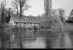 Heiliger See, Potsdam, Germany (Lars-Rollberg.com) Tags: germany heiligersee potsdam bw blackandwhite ice winter frosty