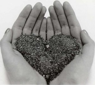 Heart Vector heart in hands ai