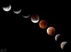 Eclipse 2015-09-28 / Compilation (svenpetersen1965) Tags: moon eclipse nightshot harvest super lunar compilation mondfinsternis totallunareclipse