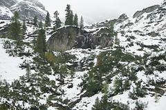 Nationalpark Hohe Tauern in der Umgebung der Rudolfshtte am Weisee-bw_20150925_2593.jpg (Barbara Walzer) Tags: uttendorf nationalparkhohetauern weissee gletscherwelt berghotelrudolfshtte weisseegletscherwelt alpinzentrumrudolfshtte