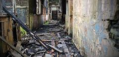 The Wise Old Owl (vtrjames88) Tags: school abandoned southwales nikon burnt owl derelict rhondda rhonddaheritagepark d3200 blaenrhondda