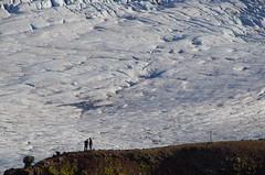 Glacier (4seasonbackpacking) Tags: snow ice walking iceland nationalpark hiking glacier backpacking glaciers vatnajökull vatnajökullglacier austerskaftafellssysla vatnajökullnationalpark 4seasonbackpacking fourseasonbackpacking
