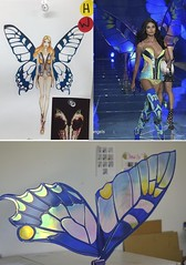Victoria's Secret Fashion Show Daniela Braga's Butterfly Wings (Fancy Fairy) Tags: supermodel angels butterflywings fairywings vsfashionshow exoticbutterflies danielabraga 2015victoriassecretfashionshow danielabragavsfashionshowvictoriassecretvsfs2015exoticbutterfliesbutterflywings