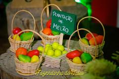 FAZENDINHA DO TULIO 2015 FINAL-42 (agencia2erres) Tags: aniversario 1 infantil festa ano fazenda fazendinha
