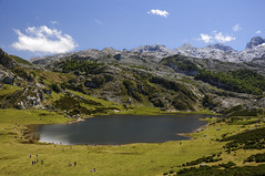 Lake Ercina (A.González) Tags: españa naturaleza lake verde green nature landscape lago nationalpark spain asturias paisaje picosdeeuropa parquenacional covadonga airelibre parquenatural angelgonzalez agiz3