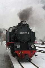 Molli: Dampflok 99 2322-8 in Bad Doberan