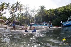 slu_bradh_V55A1014009 (kaufmankronicle) Tags: diving kidsseacamp stlucia