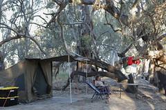 2016.11.16.18.21.45-Site 10,River Dr,Kinchega NP (www.davidmolloyphotography.com) Tags: newsouthwales darlingriver menindee kinchega kincheganationalpark