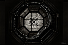 Pike County Courthouse Study III (In Wonder Photo) Tags: skylight stairwell architectural interior monochrome blackandwhite bw black white nikon d750 stainedglass pittsfield illinois markadsit