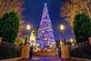 Buena Christmas Street - EXPLORE (Matt Valeriote) Tags: hdr disneyland disney californiaadventure buenavistastreet christmas christmastree night holiday